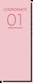 COORDINATE01